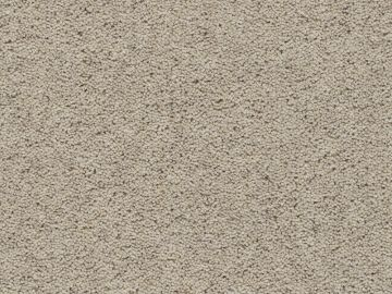 Devonia Heather Plain